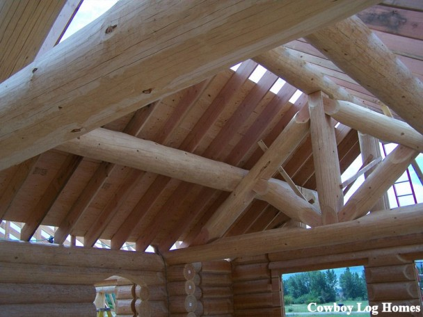 Handcrafted Log Home Shell Roof