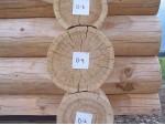 Douglas Fir Handcrafted Log Homes
