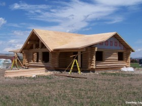 Day Five ~ Roof Sheathing of Cabin