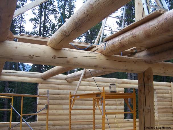 Log Floor Joists and Ridge Support Post
