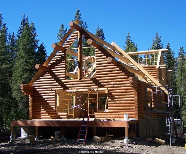 Log Home Shell with Log Ridge Beam and Log Purlins