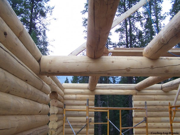 Staggered Log Floor Joists
