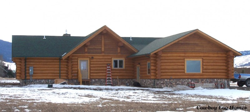 january 1st log home rear